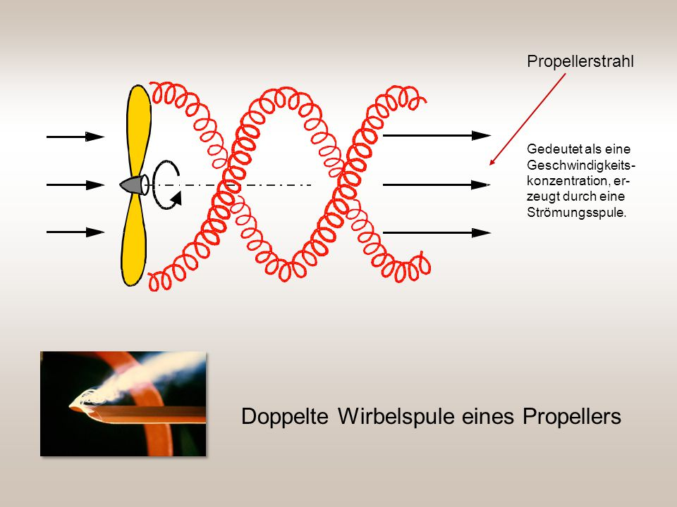 Doppelte Wirbelspule eines Propellers Propellerstrahl Gedeutet als eine Geschwindigkeits- konzentration, er- zeugt durch eine Strömungsspule.