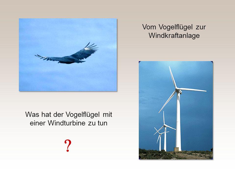 Eine moderne Windkraftanlage hat einen c p -Wert von 0,50 Das ist 85% des theoretischen Maximums Wenn hoher Wirkungsgrad das einzige Ziel wäre, würde man gewiss auch 90% erreichen Aber bestimmt nicht so !