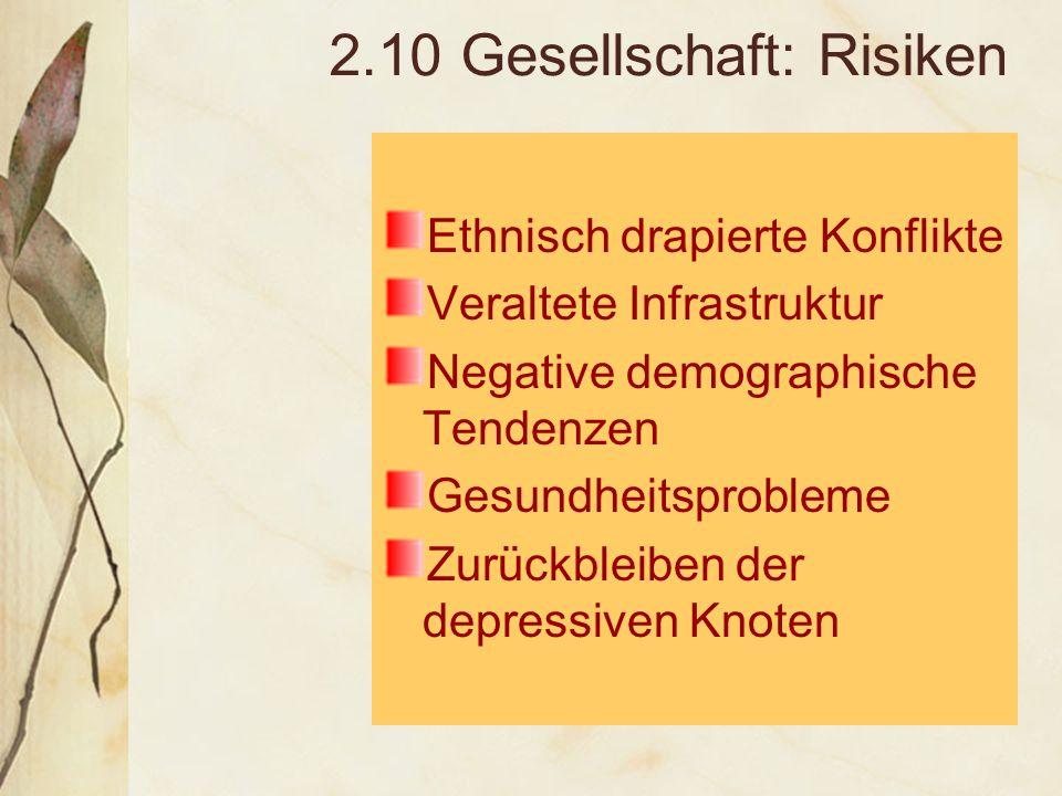 2.10 Gesellschaft: Risiken Ethnisch drapierte Konflikte Veraltete Infrastruktur Negative demographische Tendenzen Gesundheitsprobleme Zurückbleiben der depressiven Knoten