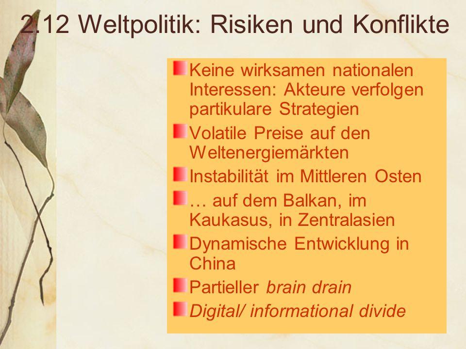 2.12 Weltpolitik: Risiken und Konflikte Keine wirksamen nationalen Interessen: Akteure verfolgen partikulare Strategien Volatile Preise auf den Weltenergiemärkten Instabilität im Mittleren Osten … auf dem Balkan, im Kaukasus, in Zentralasien Dynamische Entwicklung in China Partieller brain drain Digital/ informational divide