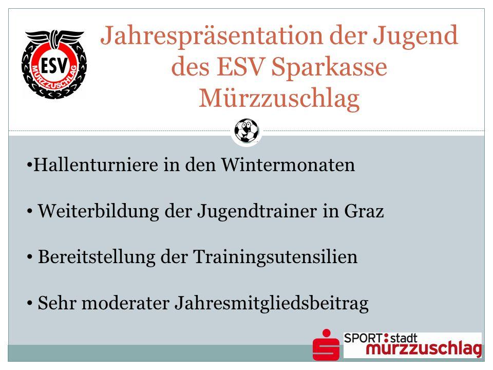 Jahrespräsentation der Jugend des ESV Sparkasse Mürzzuschlag Hallenturniere in den Wintermonaten Weiterbildung der Jugendtrainer in Graz Bereitstellung der Trainingsutensilien Sehr moderater Jahresmitgliedsbeitrag