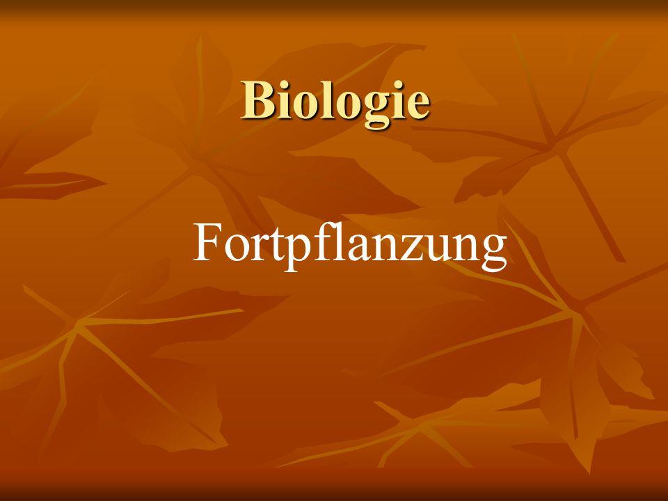 Biologie Fortpflanzung