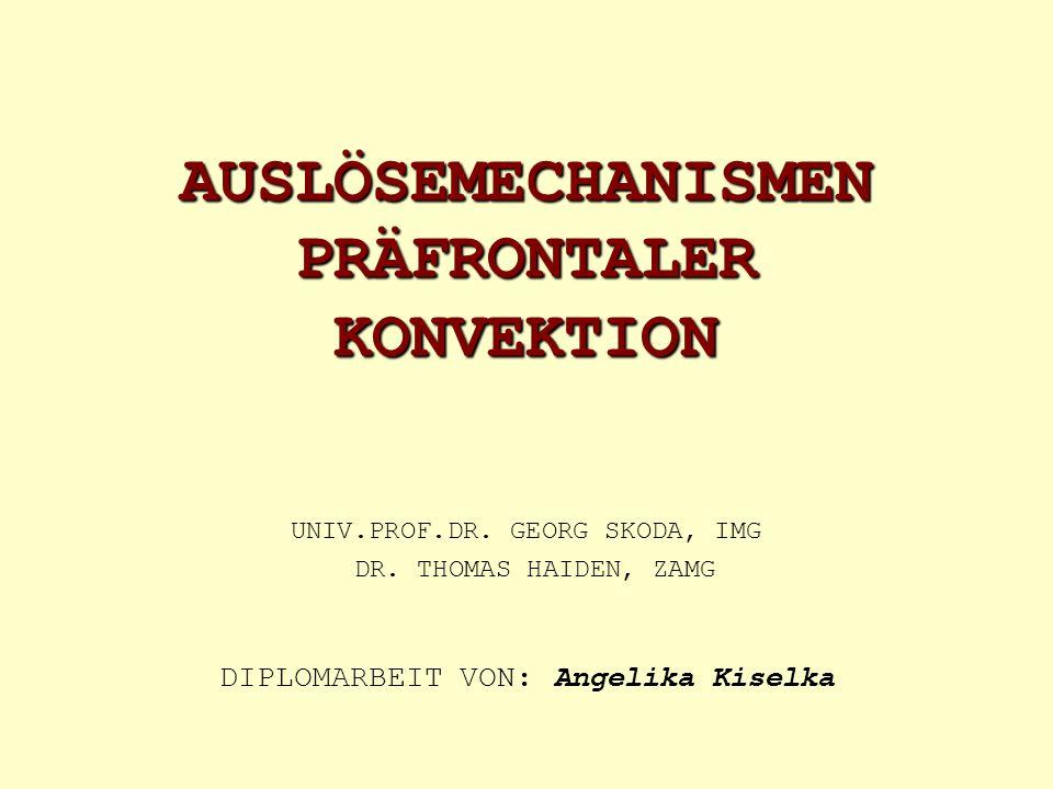 AUSLÖSEMECHANISMEN PRÄFRONTALER KONVEKTION UNIV.PROF.DR. GEORG SKODA, IMG DR. THOMAS HAIDEN, ZAMG DIPLOMARBEIT VON: Angelika Kiselka