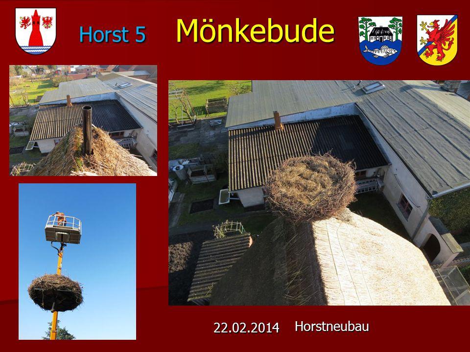 Horst 5 Mönkebude 22.02.2014 Horstneubau