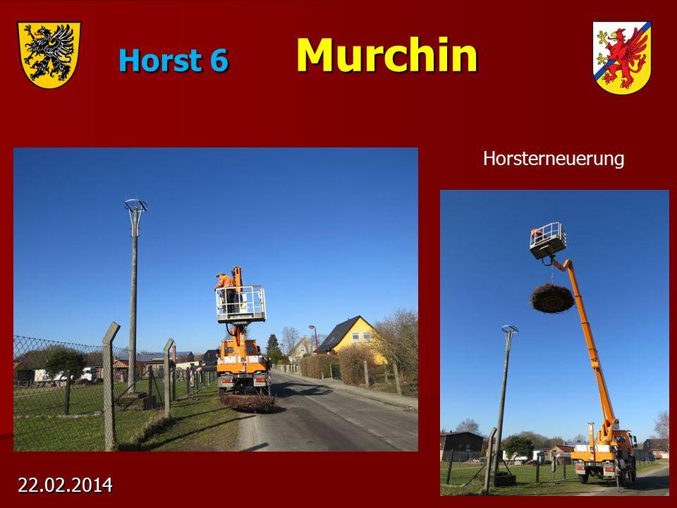 Horst 6 Murchin 22.02.2014 Horsterneuerung
