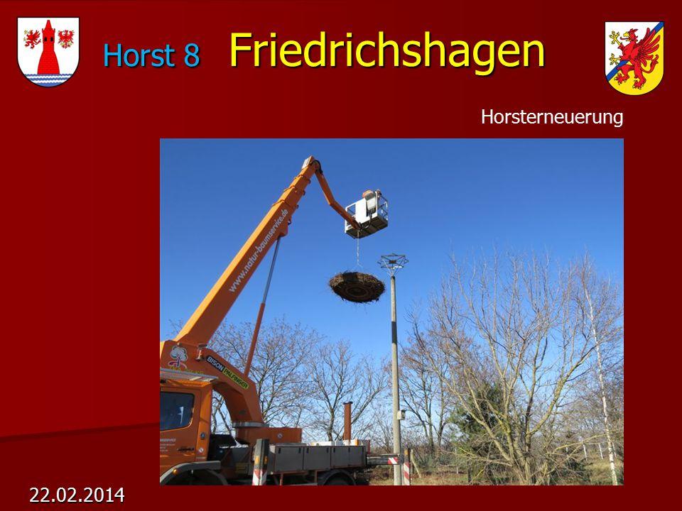 Horst 8 Friedrichshagen Horst 8 Friedrichshagen 22.02.2014 Horsterneuerung