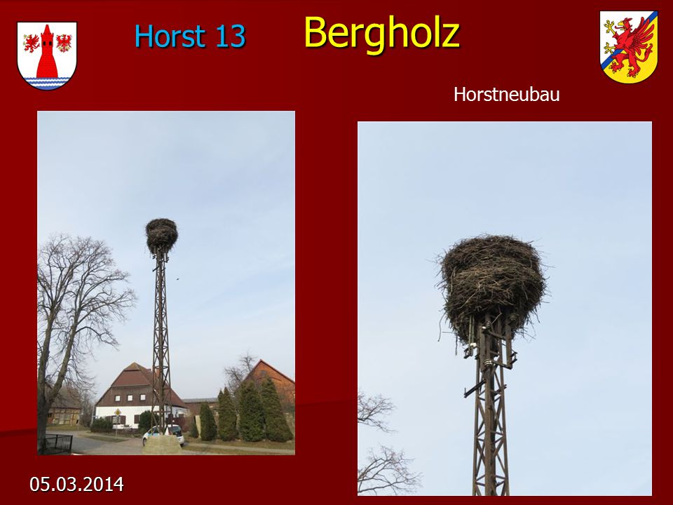 Horst 13 Bergholz 05.03.2014 Horstneubau