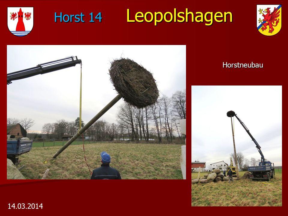 Horst 14 Leopolshagen Horst 14 Leopolshagen Horstneubau Horstneubau 14.03.2014