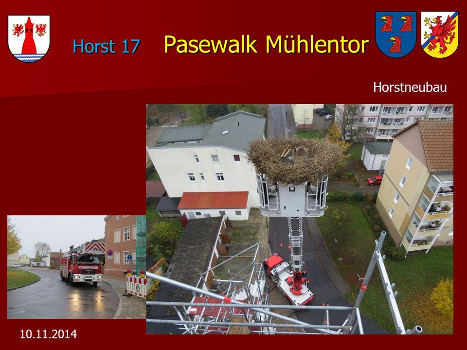 Horst 17 Pasewalk Mühlentor Horst 17 Pasewalk Mühlentor 10.11.2014 Horstneubau