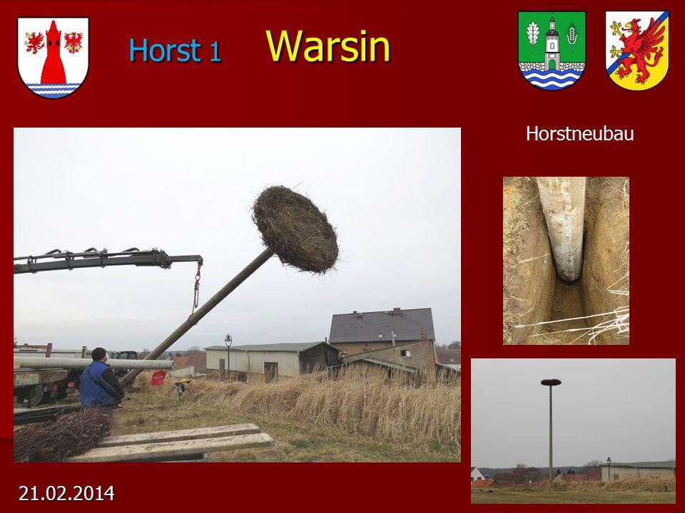 Horst 1 Warsin Horst 1 Warsin 21.02.2014 Horstneubau