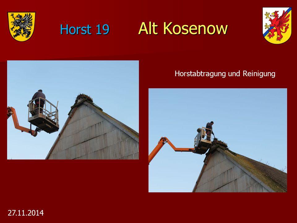 Horst 19 Alt Kosenow Horstabtragung und Reinigung 27.11.2014