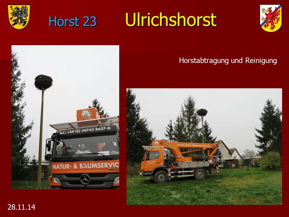 Horst 23 Ulrichshorst 28.11.14 Horstabtragung und Reinigung