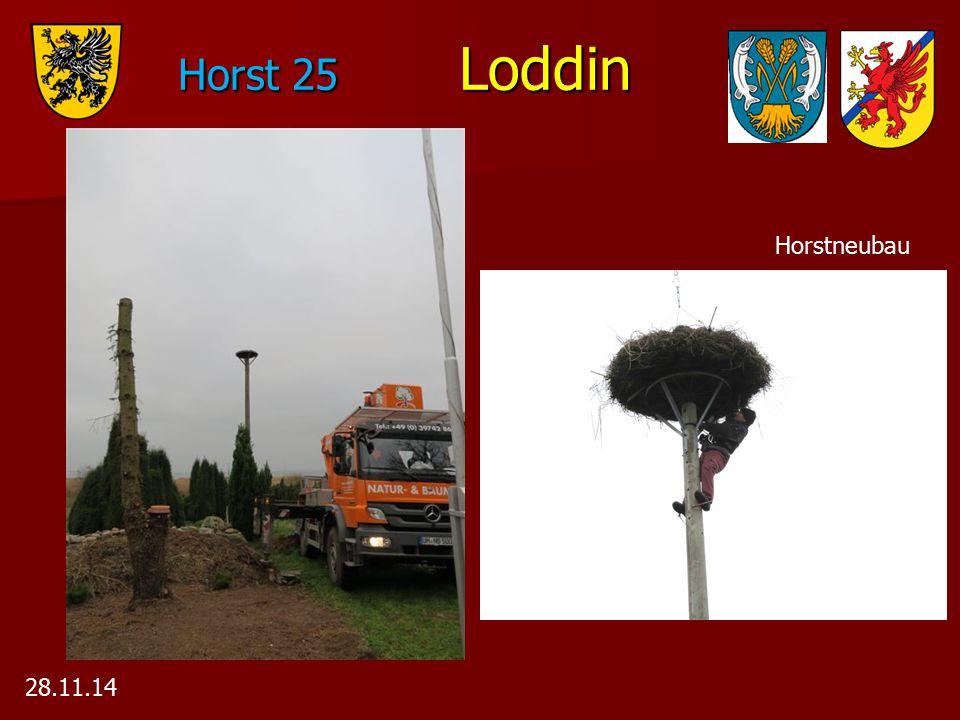 Horst 25 Loddin Horstneubau 28.11.14