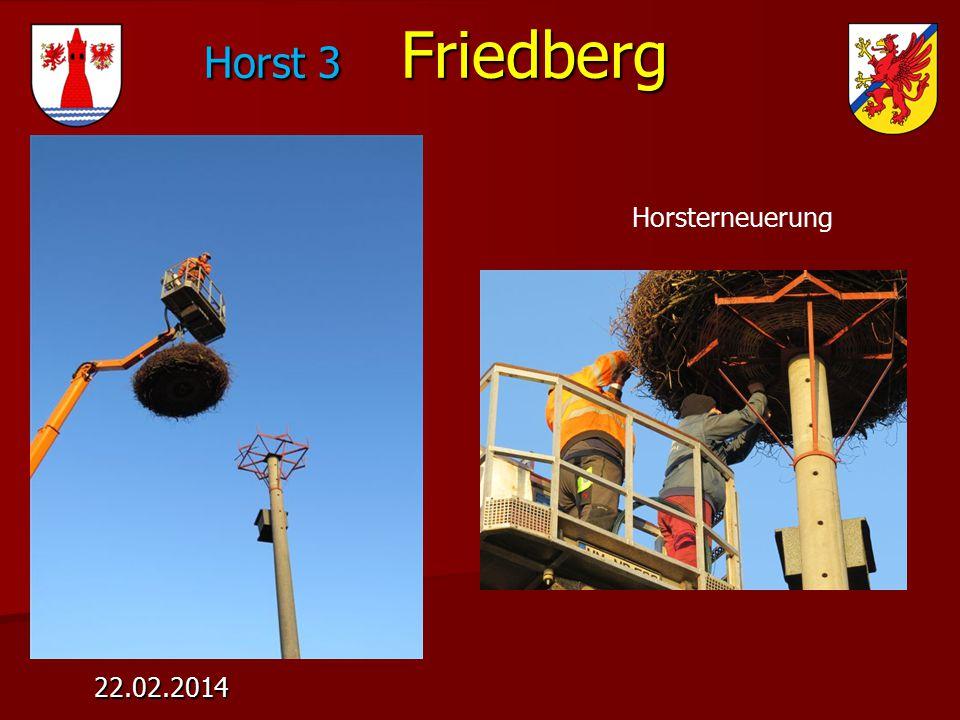 Horst 3 Friedberg Horst 3 Friedberg 22.02.2014 Horsterneuerung