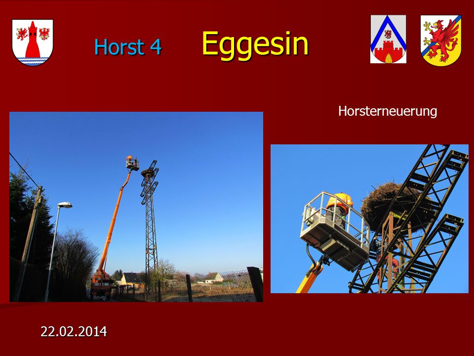 Horst 4 Eggesin 22.02.2014 Horsterneuerung