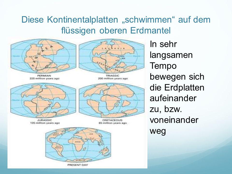 """Diese Kontinentalplatten """"schwimmen auf dem flüssigen oberen Erdmantel In sehr langsamen Tempo bewegen sich die Erdplatten aufeinander zu, bzw."""