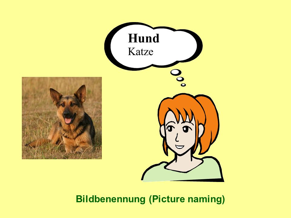 Hund Katze Bildbenennung (Picture naming)
