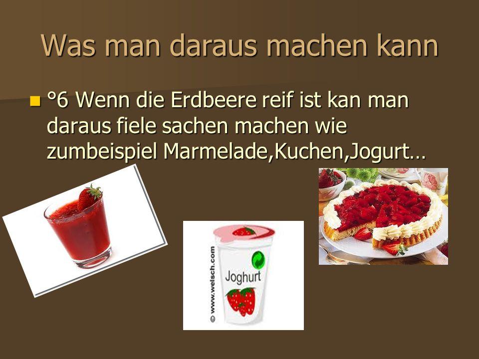 Was man daraus machen kann °6 Wenn die Erdbeere reif ist kan man daraus fiele sachen machen wie zumbeispiel Marmelade,Kuchen,Jogurt… °6 Wenn die Erdbe