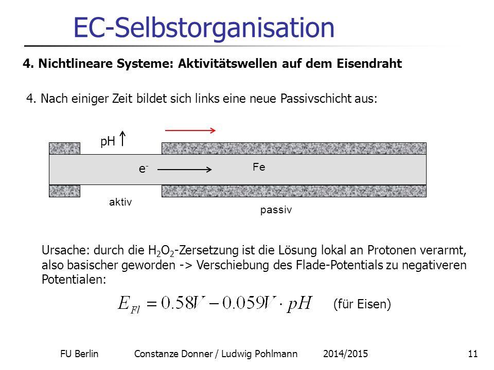 FU Berlin Constanze Donner / Ludwig Pohlmann 2014/201511 EC-Selbstorganisation 4. Nichtlineare Systeme: Aktivitätswellen auf dem Eisendraht 4. Nach ei