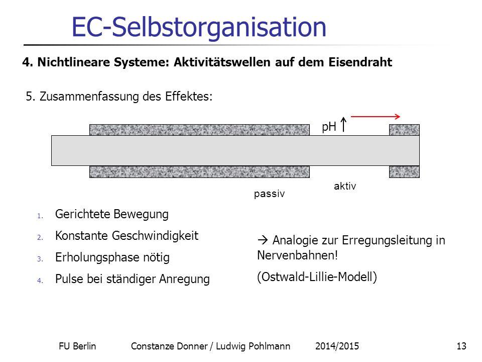 FU Berlin Constanze Donner / Ludwig Pohlmann 2014/201513 EC-Selbstorganisation 4. Nichtlineare Systeme: Aktivitätswellen auf dem Eisendraht 5. Zusamme