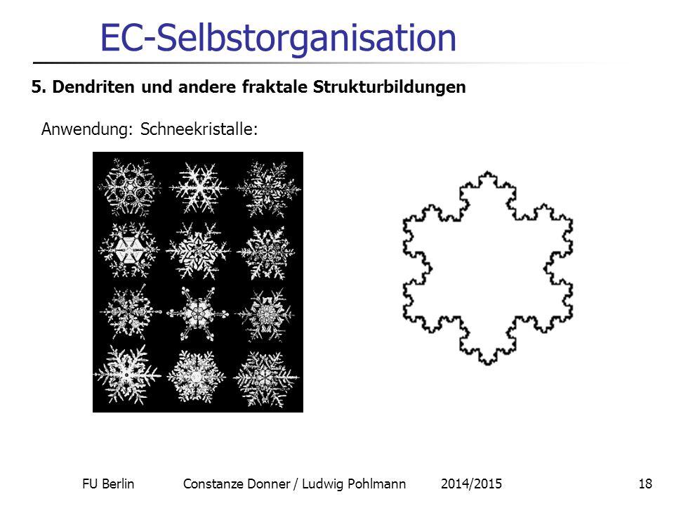 FU Berlin Constanze Donner / Ludwig Pohlmann 2014/201518 EC-Selbstorganisation 5. Dendriten und andere fraktale Strukturbildungen Anwendung: Schneekri