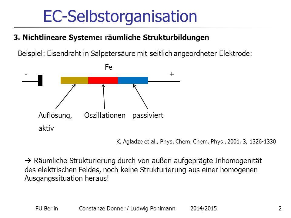FU Berlin Constanze Donner / Ludwig Pohlmann 2014/20152 EC-Selbstorganisation 3. Nichtlineare Systeme: räumliche Strukturbildungen Beispiel: Eisendrah