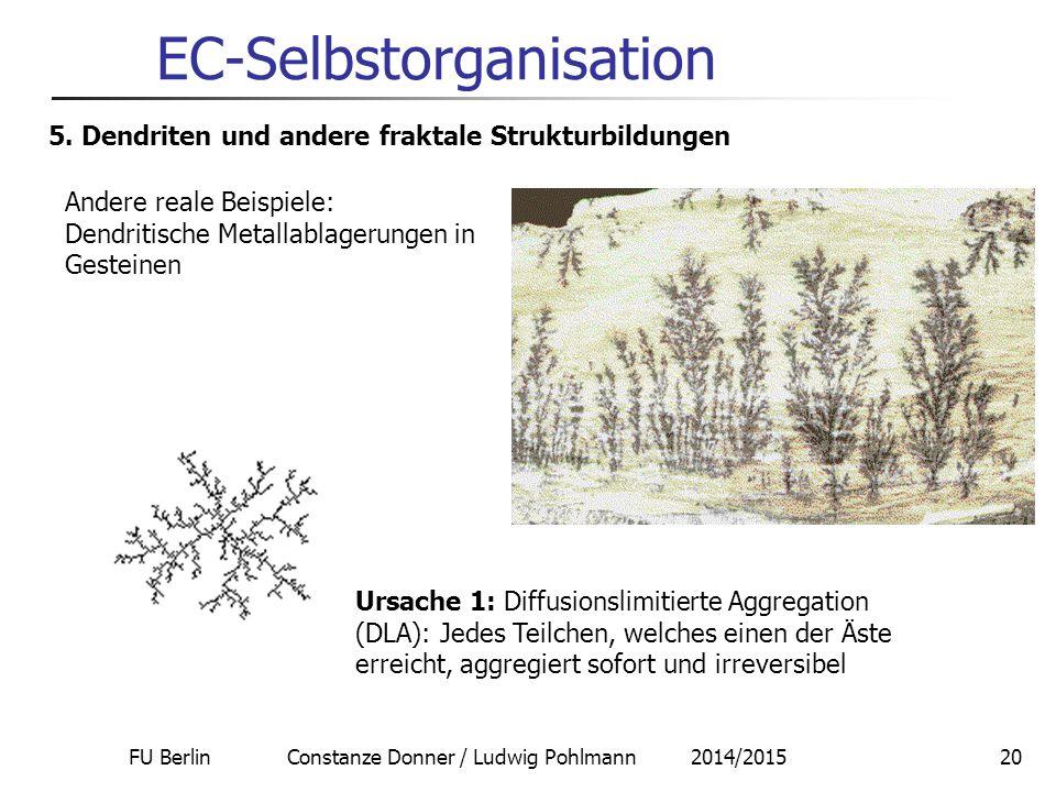 FU Berlin Constanze Donner / Ludwig Pohlmann 2014/201520 EC-Selbstorganisation 5. Dendriten und andere fraktale Strukturbildungen Andere reale Beispie