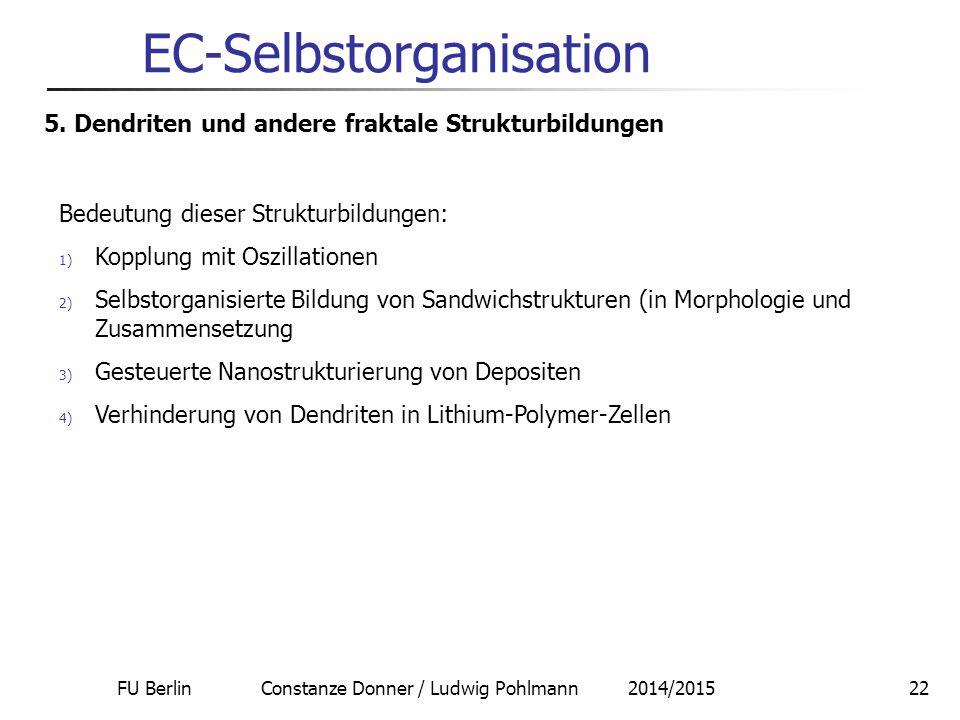 FU Berlin Constanze Donner / Ludwig Pohlmann 2014/201522 EC-Selbstorganisation 5. Dendriten und andere fraktale Strukturbildungen Bedeutung dieser Str