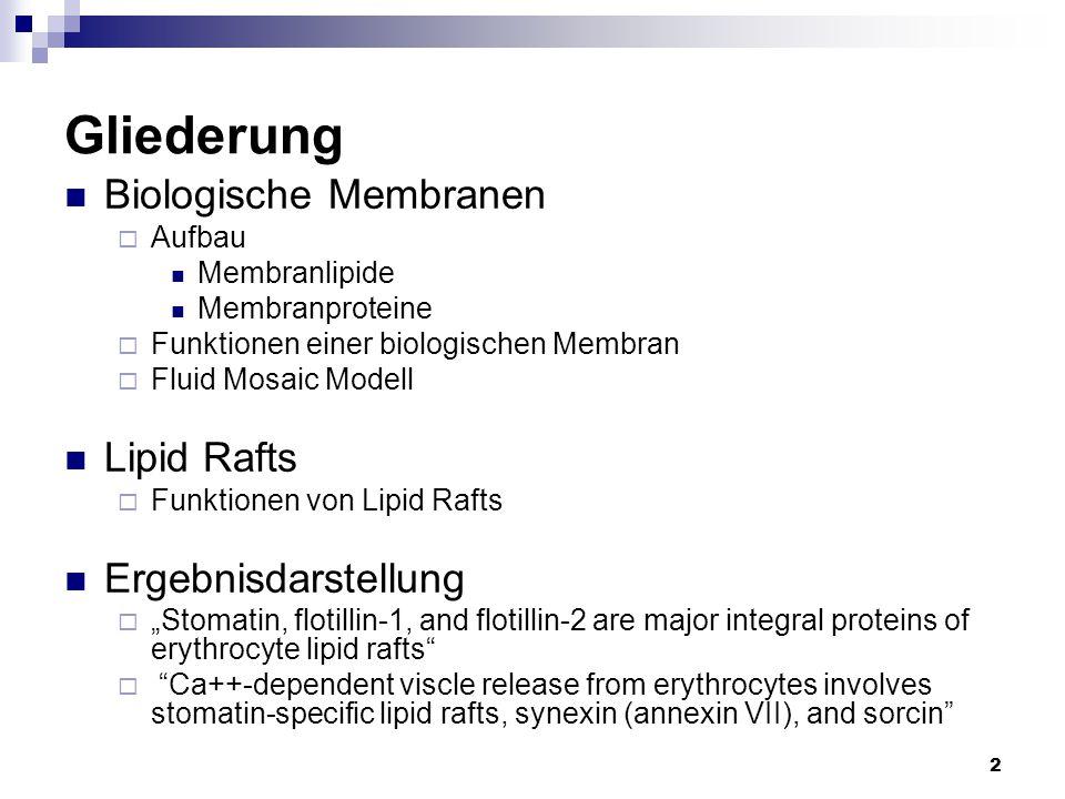 2 Gliederung Biologische Membranen  Aufbau Membranlipide Membranproteine  Funktionen einer biologischen Membran  Fluid Mosaic Modell Lipid Rafts 