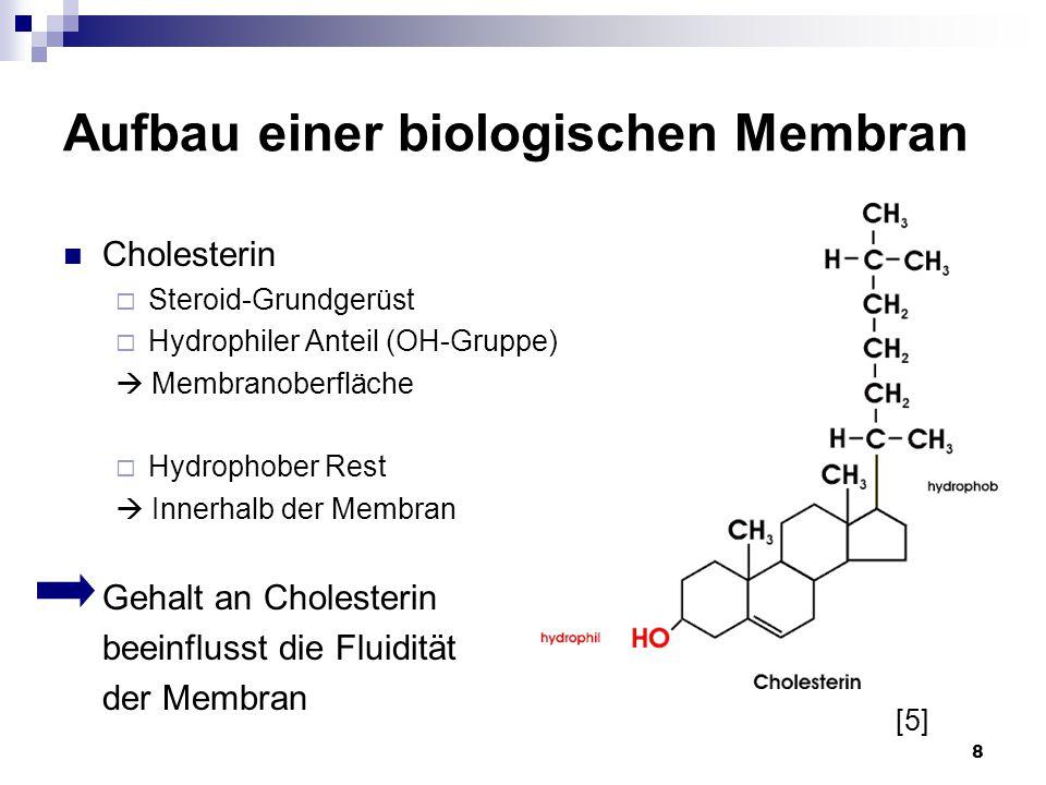 8 Aufbau einer biologischen Membran Cholesterin  Steroid-Grundgerüst  Hydrophiler Anteil (OH-Gruppe)  Membranoberfläche  Hydrophober Rest  Innerh