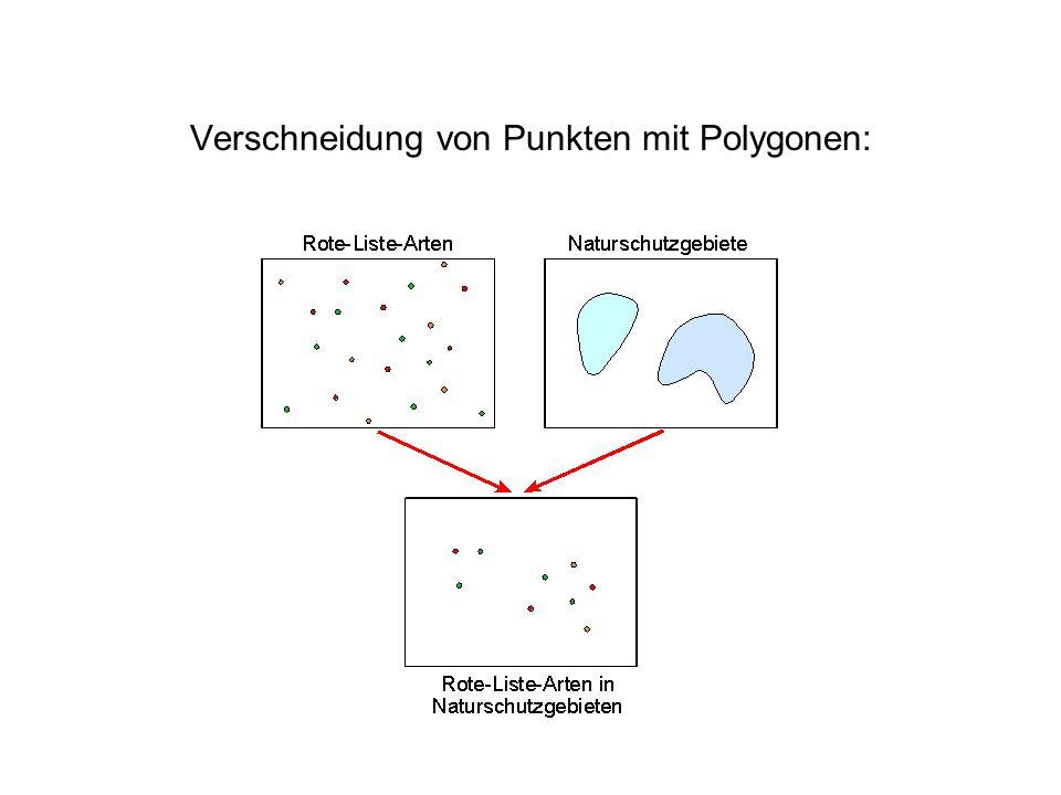 Verschneidung von Punkten mit Polygonen: