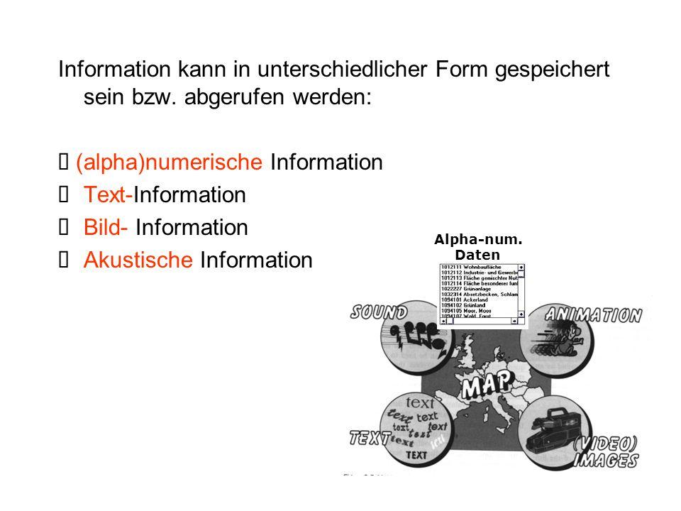 Information kann in unterschiedlicher Form gespeichert sein bzw. abgerufen werden:  (alpha)numerische Information  Text-Information  Bild- Informat