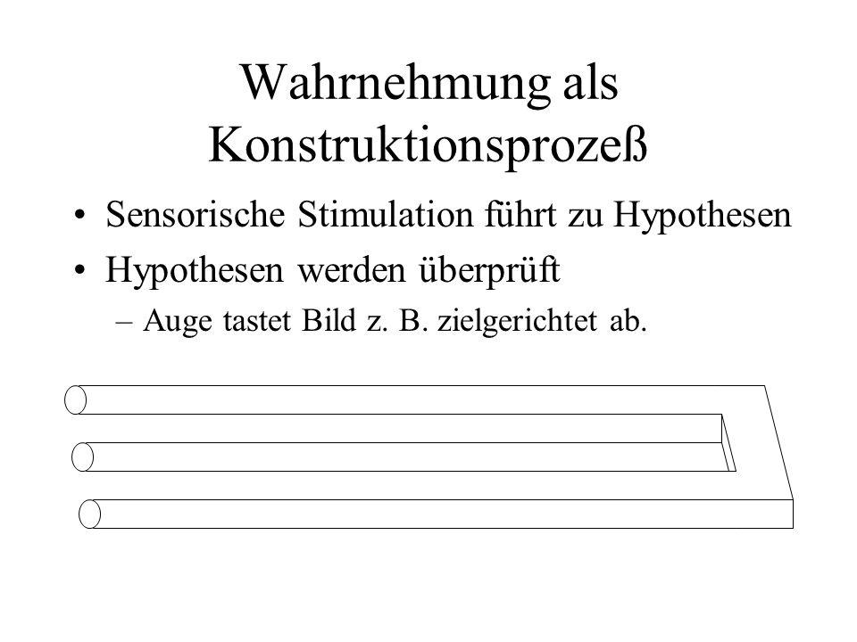Wahrnehmung als Konstruktionsprozeß Sensorische Stimulation führt zu Hypothesen Hypothesen werden überprüft –Auge tastet Bild z. B. zielgerichtet ab.