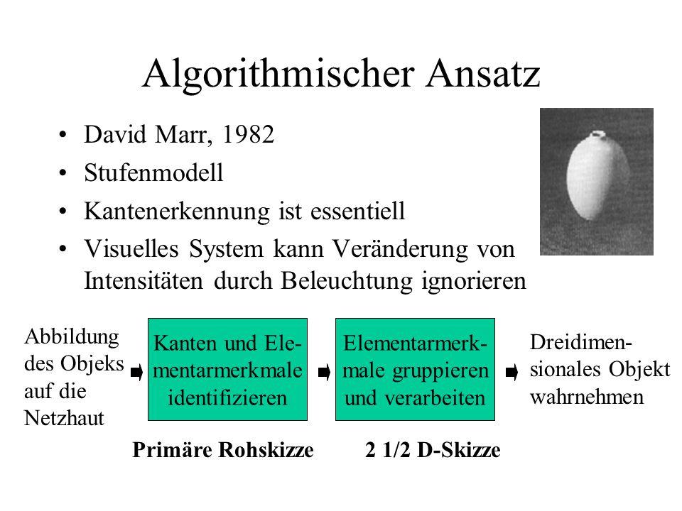 Algorithmischer Ansatz David Marr, 1982 Stufenmodell Kantenerkennung ist essentiell Visuelles System kann Veränderung von Intensitäten durch Beleuchtung ignorieren Kanten und Ele- mentarmerkmale identifizieren Elementarmerk- male gruppieren und verarbeiten Dreidimen- sionales Objekt wahrnehmen Abbildung des Objeks auf die Netzhaut Primäre Rohskizze2 1/2 D-Skizze