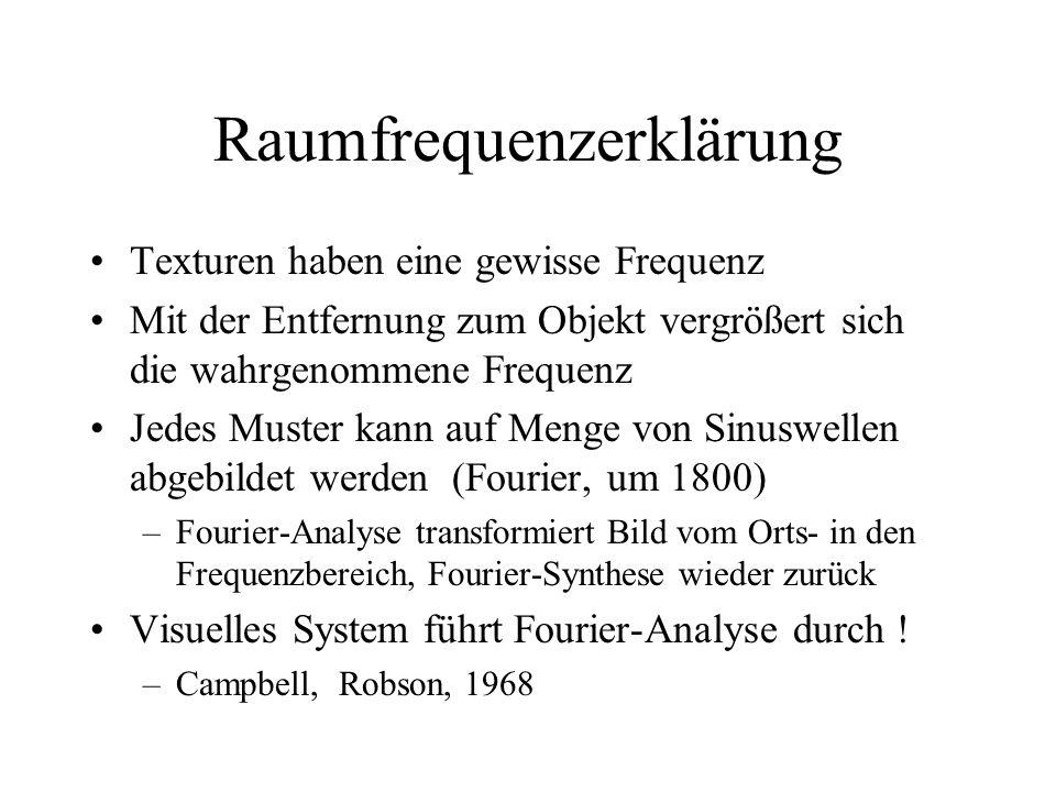 Raumfrequenzerklärung Texturen haben eine gewisse Frequenz Mit der Entfernung zum Objekt vergrößert sich die wahrgenommene Frequenz Jedes Muster kann auf Menge von Sinuswellen abgebildet werden (Fourier, um 1800) –Fourier-Analyse transformiert Bild vom Orts- in den Frequenzbereich, Fourier-Synthese wieder zurück Visuelles System führt Fourier-Analyse durch .