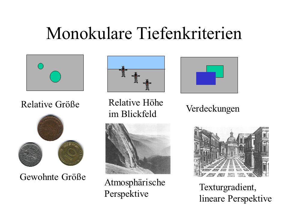 Monokulare Tiefenkriterien Relative Größe Relative Höhe im Blickfeld Gewohnte Größe Verdeckungen Texturgradient, lineare Perspektive Atmosphärische Perspektive