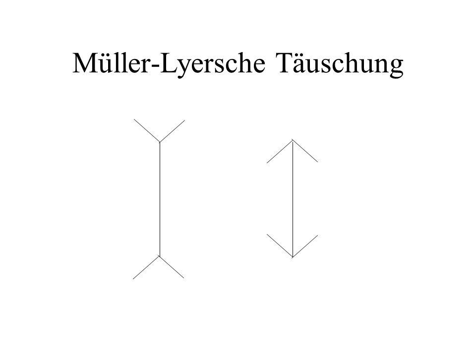 Müller-Lyersche Täuschung