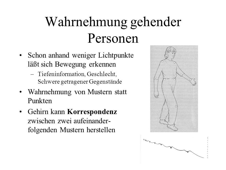 Wahrnehmung gehender Personen Schon anhand weniger Lichtpunkte läßt sich Bewegung erkennen –Tiefeninformation, Geschlecht, Schwere getragener Gegenstände Wahrnehmung von Mustern statt Punkten Gehirn kann Korrespondenz zwischen zwei aufeinander- folgenden Mustern herstellen