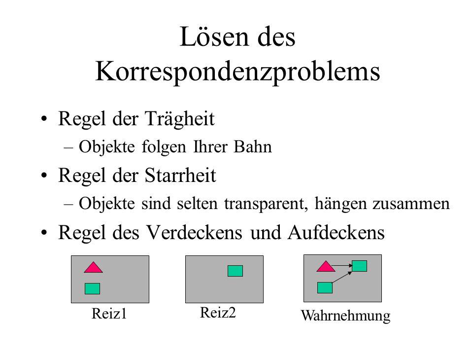 Lösen des Korrespondenzproblems Regel der Trägheit –Objekte folgen Ihrer Bahn Regel der Starrheit –Objekte sind selten transparent, hängen zusammen Regel des Verdeckens und Aufdeckens Reiz1 Reiz2 Wahrnehmung