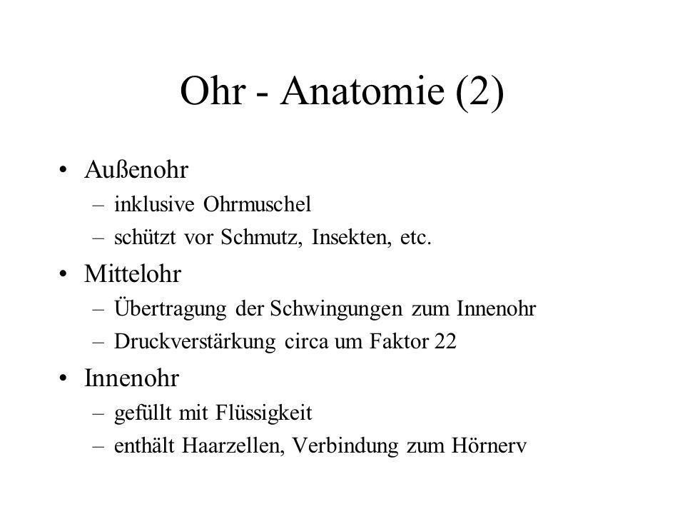 Ohr - Anatomie (2) Außenohr –inklusive Ohrmuschel –schützt vor Schmutz, Insekten, etc. Mittelohr –Übertragung der Schwingungen zum Innenohr –Druckvers