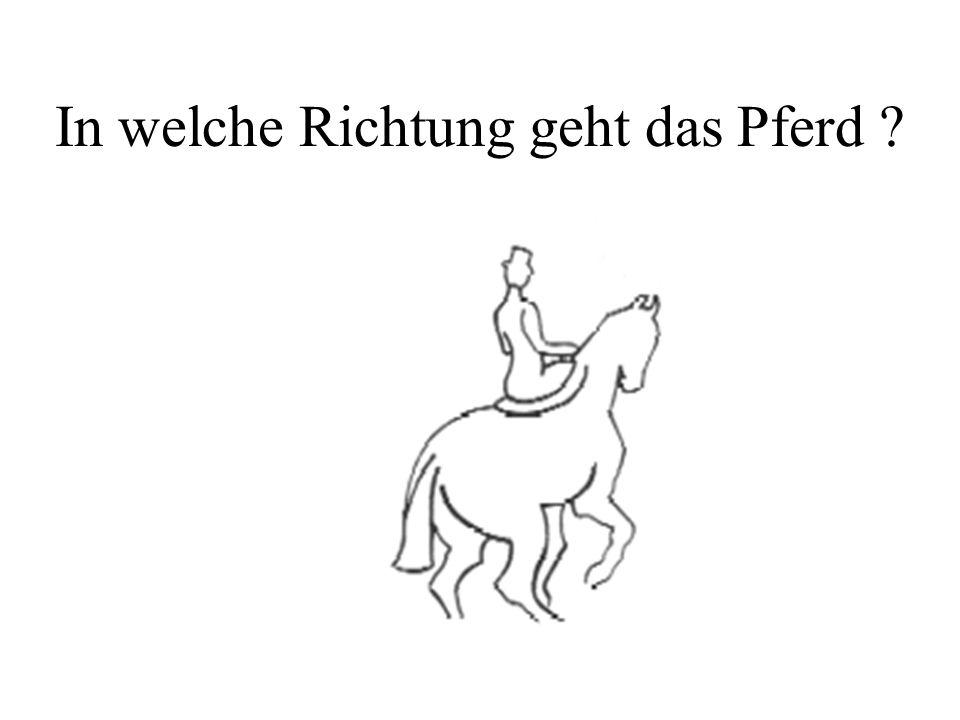 In welche Richtung geht das Pferd ?