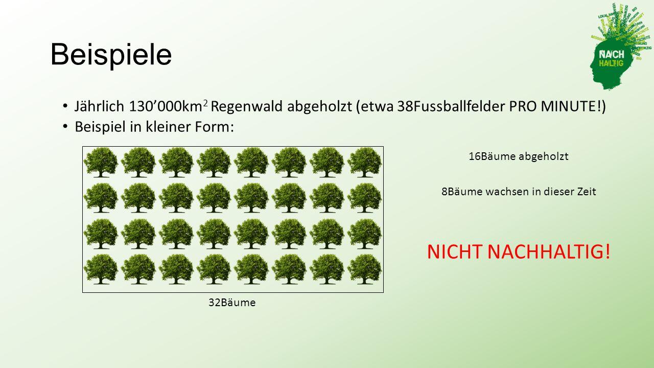 Beispiele Jährlich 130'000km 2 Regenwald abgeholzt (etwa 38Fussballfelder PRO MINUTE!) Beispiel in kleiner Form: 32Bäume 16Bäume abgeholzt 8Bäume wachsen in dieser Zeit NICHT NACHHALTIG!