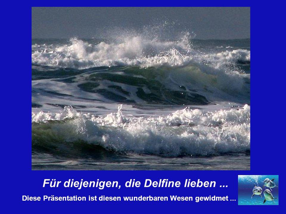 Für diejenigen, die Delfine lieben... Diese Präsentation ist diesen wunderbaren Wesen gewidmet...