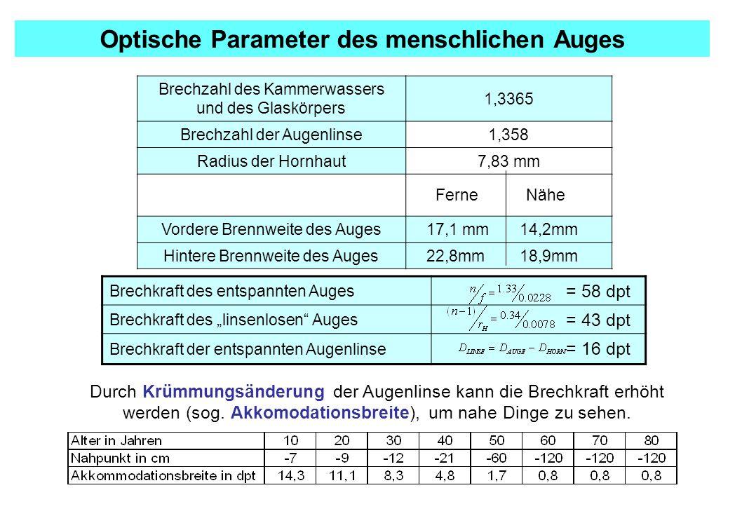 """Brechzahl des Kammerwassers und des Glaskörpers 1,3365 Brechzahl der Augenlinse1,358 Radius der Hornhaut7,83 mm Ferne Nähe Vordere Brennweite des Auges 17,1 mm 14,2mm Hintere Brennweite des Auges 22,8mm 18,9mm Optische Parameter des menschlichen Auges Brechkraft des entspannten Auges = 58 dpt Brechkraft des """"linsenlosen Auges = 43 dpt Brechkraft der entspannten Augenlinse = 16 dpt Durch Krümmungsänderung der Augenlinse kann die Brechkraft erhöht werden (sog."""