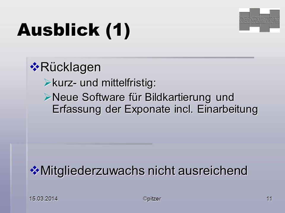 15.03.2014©pitzer11 Ausblick (1)  Rücklagen  kurz- und mittelfristig:  Neue Software für Bildkartierung und Erfassung der Exponate incl.