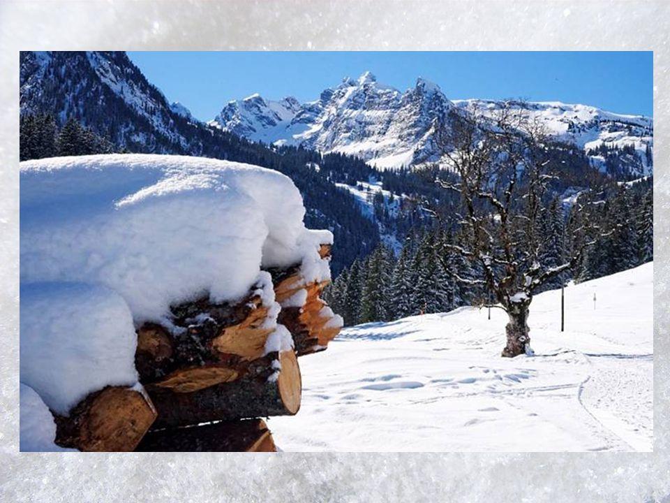 Eingehüllt in weißer Decke träumt jeder Baum und jeder Strauch, und jede noch so kleine Hecke spürt diese Winterruhe auch.