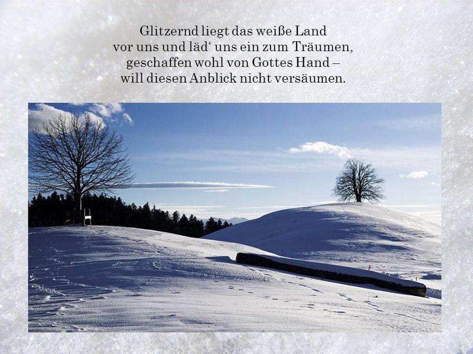 Glitzernd liegt das weiße Land vor uns und läd' uns ein zum Träumen, geschaffen wohl von Gottes Hand – will diesen Anblick nicht versäumen.
