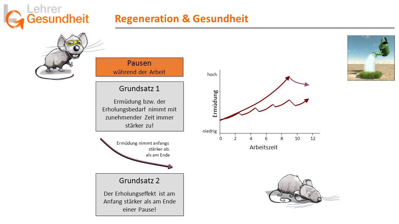 Regeneration & Gesundheit Pausen während der Arbeit Pausen während der Arbeit Ermüdung niedrig hoch 0 2 4 6 8 10 12 Arbeitszeit Grundsatz 2 Der Erholu