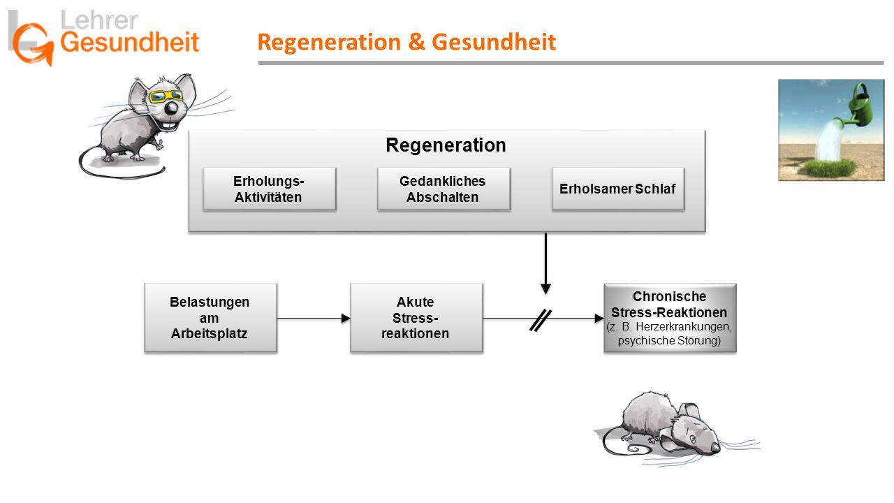 Regeneration & Gesundheit Belastungen am Arbeitsplatz Belastungen am Arbeitsplatz Akute Stress- reaktionen Akute Stress- reaktionen Chronische Stress-Reaktionen (z.