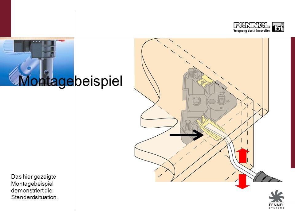 Montagebeispiel Das hier gezeigte Montagebeispiel demonstriert die Standardsituation.